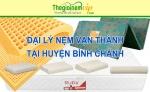 Đại lý nệm Vạn Thành tại huyện Bình Chánh TPHCM
